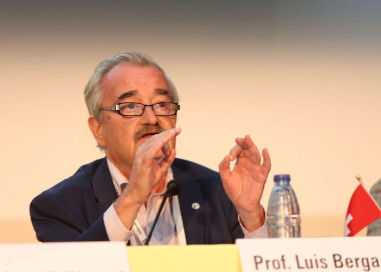 Prof Luis Berga